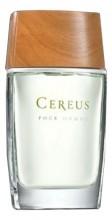 Cereus №5