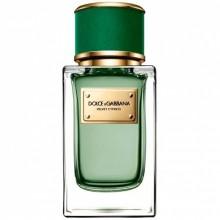 Dolce & Gabbana Velvet Cypress