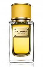 Dolce & Gabbana Velvet Ginestra